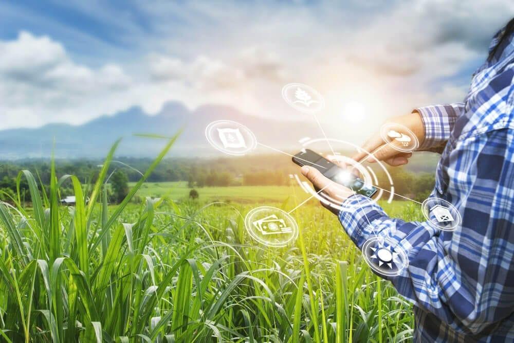 Entenda a renovação do incentivo sobre ICMS agrícola